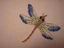 libellule/ libelle/ dragonfly
