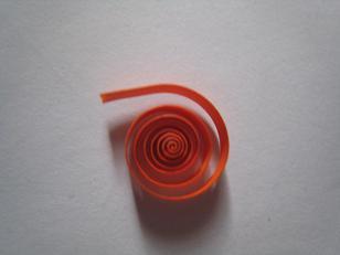 open spiraal/ open roll/ spirale ouverte
