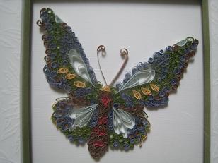 papillon/vlinder/butterfly